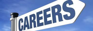 job opening senior s executive human resource consultants job opening senior s executive