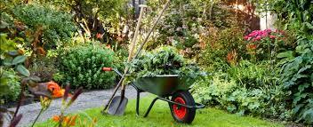 Kertgondozás - kertfenntartás, kert karbantartás