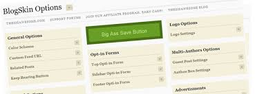 The Best Thesis Skin for Internet Marketers and Small Business     BlogSkin new thesis option panel