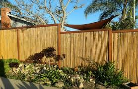 canisse jardin