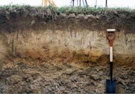 Image result for soil profile