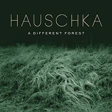 <b>Hauschka - A Different</b> Forest - Amazon.com Music