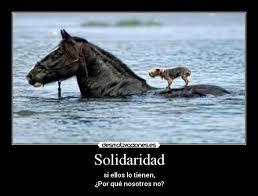 Resultado de imagen de imagenes de la solidaridad
