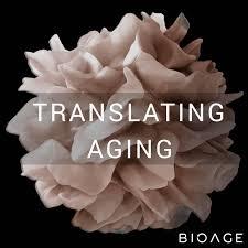 Translating Aging