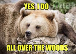 14 Adorable Animal Memes that Make Life a Little Better • The Leek via Relatably.com