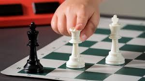 Risultati immagini per check in chess