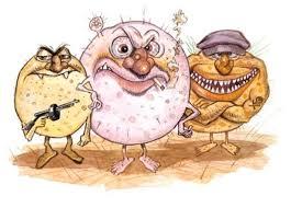Risultati immagini per infezioni ospedaliere