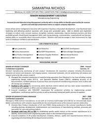 resume format marketing cipanewsletter resume format marketing resume format for marketing