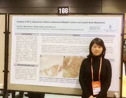 uncategorized pathology laboratory medicine boston university sun uscap2016 pd l1expression bladdercancer 8023
