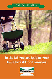 best ideas about lawn feed grass fertilizer 17 best ideas about lawn feed grass fertilizer lawn care tips and lawn care
