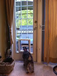 large sliding patio doors: white patio door design withdog door ideas and wicker carpet ideas full size