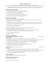 doc examples of resumes simple resume format in word job criminal justice resumes