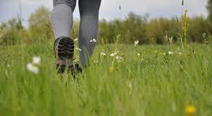 find a nature reserve gloucestershire wildlife trust wander c emma bradshaw