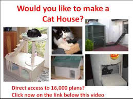 Cat house  Cat house plans needed or Cat house drawings needed    Cat house  Cat house plans needed or Cat house drawings needed  Check this