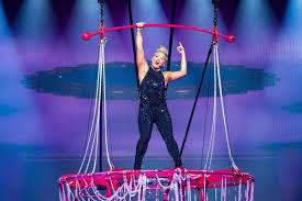 Pink Performs Tricks in <b>Sequin</b> Jumpsuit and Matching <b>Glitter</b> Boots ...