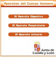 http://www.educa.jcyl.es/educacyl/cm/gallery/Recursos%20Infinity/juegos_jcyl/cuerpo_uri/home1.html