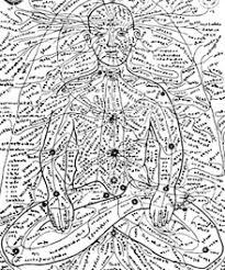 Imagini pentru marma in the human body