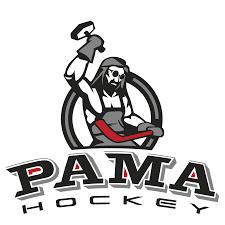 PHX <b>Carbon</b> Ice Hockey <b>Stick</b> - Pama Hockey