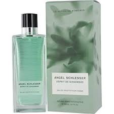 Buy <b>Angel Schlesser Esprit</b> De Gingembre Eau De Toilette Spray for ...
