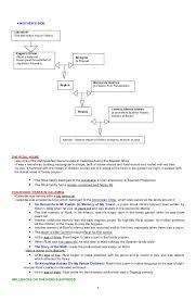 essay reviewer online