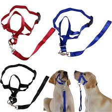 best top 10 <b>pet control harness</b> ideas and get free shipping - a44