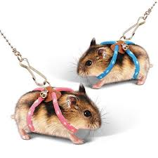 <b>Pets</b> Small <b>Pet Adjustable</b> Soft <b>Harness Leash Bird Parrot</b> Mouse ...