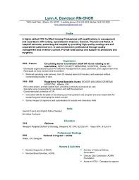 resume template objective for resume for nursing sample   resume template objective for resume sample of certified nurse education and professional metting or