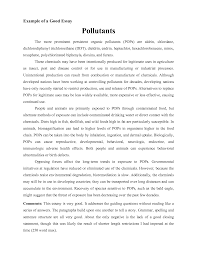 example of an essay template example of an essay