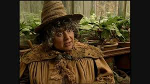 harry potter and the chamber of secrets miriam margolyes short harry potter and the chamber of secrets miriam margolyes short interview
