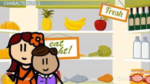 Physical Environment for Children  Definition  Characteristics  amp  Examples   Video  amp  Lesson Transcript   Study com Study com