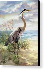 Blue Heron Right Canvas Print in 2020   Watercolor bird, Bird art ...