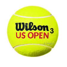 Znalezione obrazy dla zapytania piłka tenisowa
