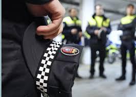 Resultado de imagen de policia local