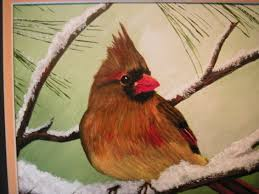 Image result for tiny dead female cardinal