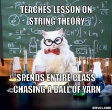 CAT YARN HUMOUR on Pinterest | Yarns, String Theory and Knitting via Relatably.com