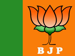 Image result for INDIA BJP PART LOGO