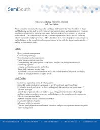 job description sample ceo job description sample