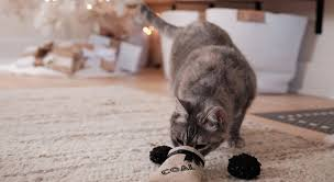 <b>Christmas Cat</b> Toys | 16 Cat Toys That Are Too <b>Cute</b> for Your Kitty to ...