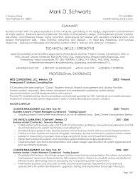 Business Analyst Resume Summary Examples  free    top professional       business analysis