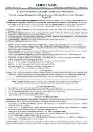 resume samples cv template cv sample global hr c level strategy professional page 1