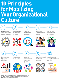 principles of organizational culture an error occurred