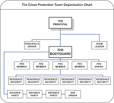 the close protection team cp team