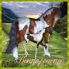 """Résultat de recherche d'images pour """"BON W E chevaux"""""""