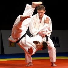 """Résultat de recherche d'images pour """"judo"""""""