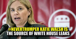 Image result for katie walsh reince priebus