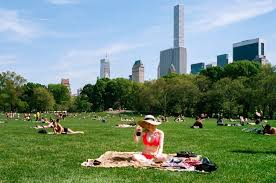 a lurk at summer in new york city s parks the fader a lurk at summer in new york city s parks