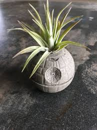 death star concrete planter single planter includes air plant star wars decor art force office decoration