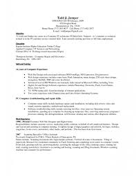 basic skills resume sample resume templates computer skills resume sample