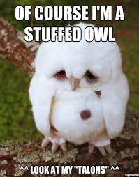 Sad Owl - WeKnowMemes Generator via Relatably.com
