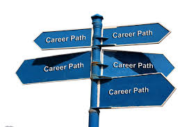 phd career path tracking